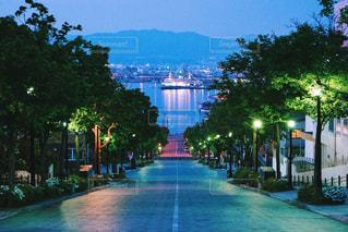 八幡坂の写真・画像素材[1224238]