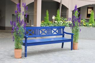 青いベンチの写真・画像素材[1223809]