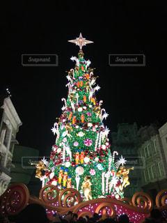 クリスマスツリーの写真・画像素材[1223769]