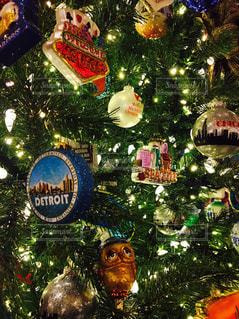 クリスマスツリーの写真・画像素材[1223770]