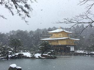 雪の金閣寺の写真・画像素材[1225861]
