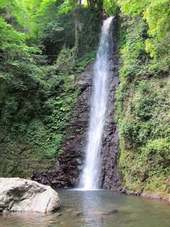 養老の滝の写真・画像素材[1229692]
