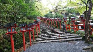 貴船神社の入り口の写真・画像素材[1224516]