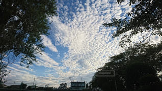 秋空の写真・画像素材[1225331]