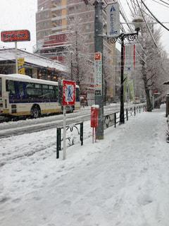 雪に覆われた中野通りの写真・画像素材[1225931]