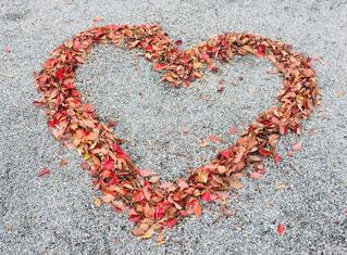落ち葉で描いたハートの写真・画像素材[4052523]