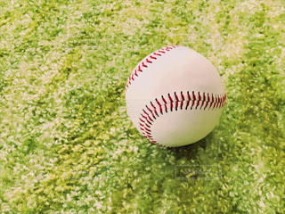 大きな白いボールの写真・画像素材[1232290]
