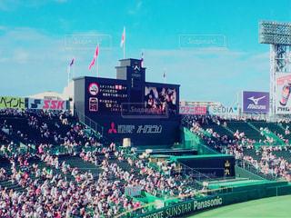 野球の試合を見ている人の群衆の写真・画像素材[1379703]