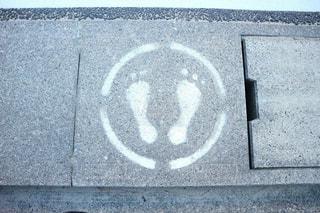 足跡を見つけましたの写真・画像素材[1246602]