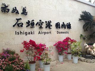 石垣空港の写真・画像素材[1225541]