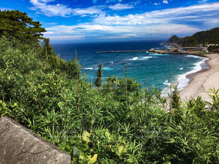 神津島の海の写真・画像素材[1227380]