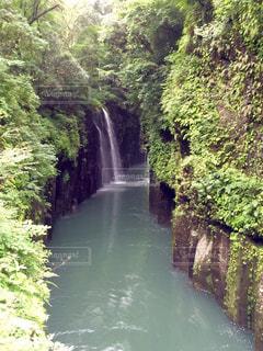 森の中の大きな滝の写真・画像素材[1227315]