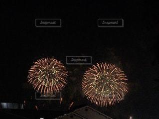 夜空の花火の写真・画像素材[1228196]