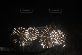 空に花火の写真・画像素材[1228197]