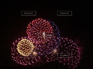 夜空の花火の写真・画像素材[1228199]