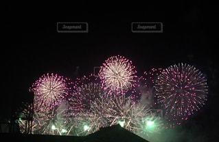 夜空の花火の写真・画像素材[1228202]