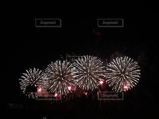 夜空の花火の写真・画像素材[1228207]