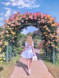 バラ園のバラアーチの前に立っている女性 - No.1227798