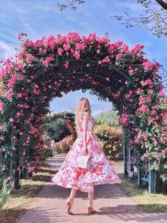 バラ園のバラアーチの前での写真・画像素材[1227799]