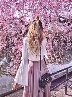 お堀の桜の前に立つ女性の写真・画像素材[1228037]