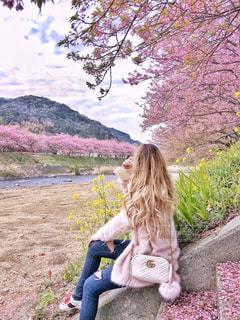 階段に座って桜を眺める女性の写真・画像素材[1228760]