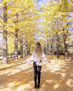 紅葉した並木道を歩く女性の写真・画像素材[1228828]
