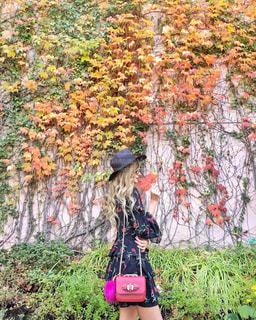 紅葉した葉っぱと女性の写真・画像素材[1228830]