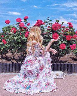 赤いバラの前に座る女性 - No.1229154