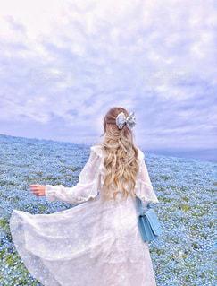 青い空と青い花の写真・画像素材[1233296]