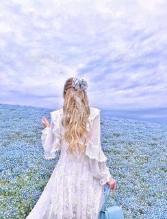 青い空と青い花の写真・画像素材[1233297]