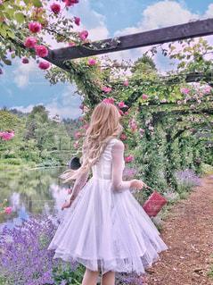 ピンクの傘を持つ少女の写真・画像素材[1268616]