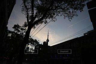 朝方のトロントタワーの写真・画像素材[1264382]