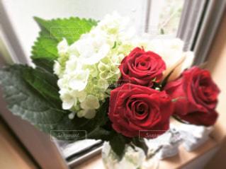 紫陽花と薔薇の写真・画像素材[1231845]
