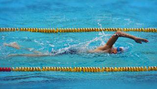クロールで泳ぐ男の子の写真・画像素材[1234402]