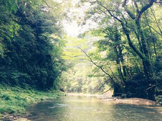 川 ここから見える風景の写真・画像素材[1452525]