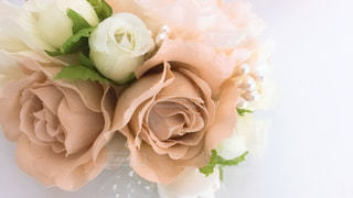 近くの花のアップの写真・画像素材[1813639]