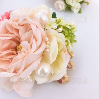 近くの花のアップの写真・画像素材[1813644]