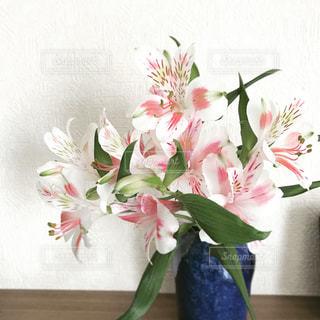 手作り花瓶とお花の写真・画像素材[1230975]