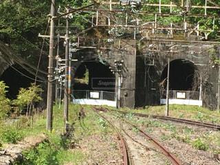 廃線とトンネルの写真・画像素材[1231737]