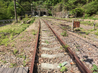 背景の木と、電車の線路の写真・画像素材[1231738]