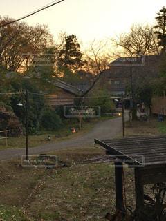 木の隣に空の街の写真・画像素材[1232395]