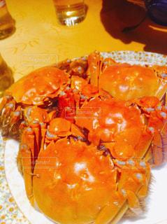 上海蟹の写真・画像素材[1236522]