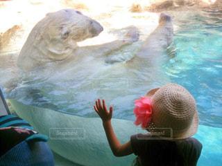 水のプールの女の子の写真・画像素材[1237237]