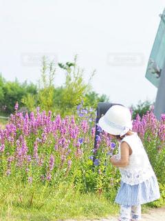 花と女の子の写真・画像素材[1312311]