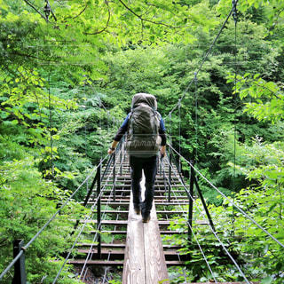 吊り橋を渡る登山者の写真・画像素材[1234912]