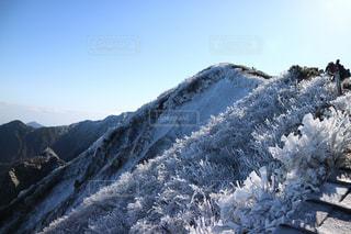 秋の大山 - No.1234939