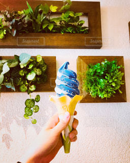 青色のソフトクリームを持っての写真・画像素材[1235095]