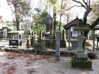宮本武蔵のお墓の写真・画像素材[1265838]