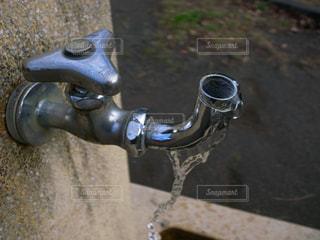 公園の水道の写真・画像素材[1265887]