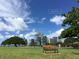 アラモアナビーチパークの写真・画像素材[1325454]